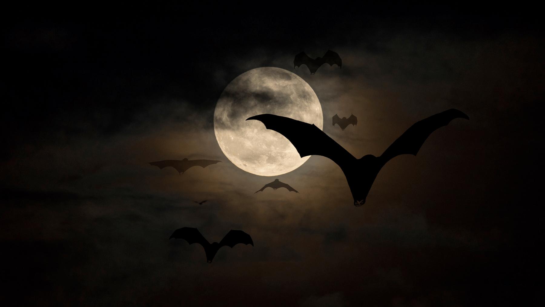 vampires & psychopaths