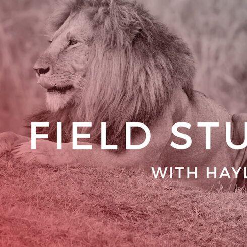 men's field study